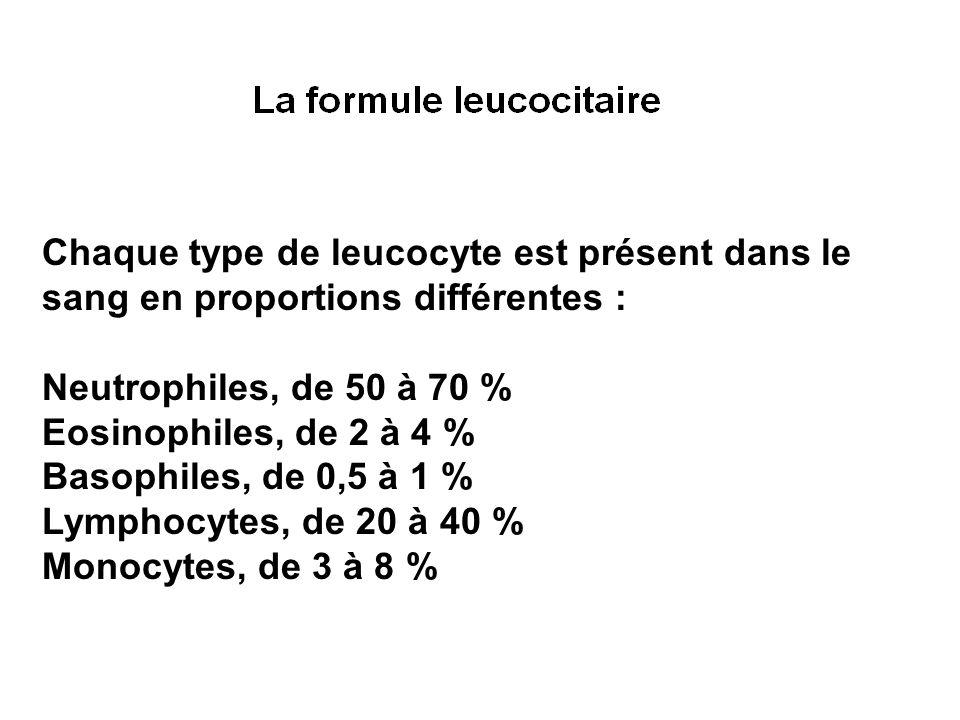 Chaque type de leucocyte est présent dans le sang en proportions différentes :