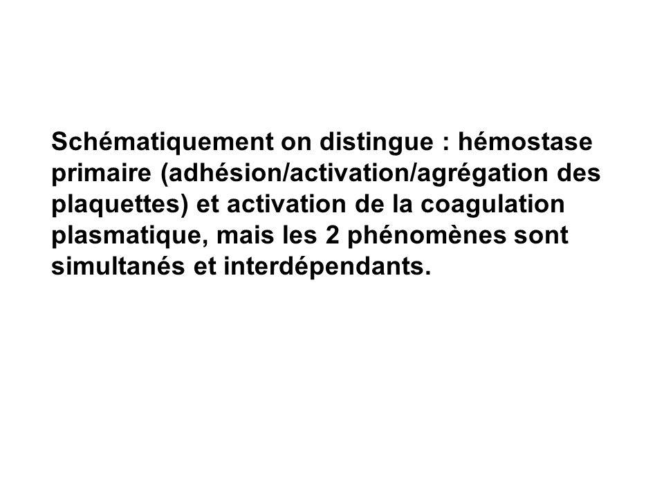 Schématiquement on distingue : hémostase primaire (adhésion/activation/agrégation des plaquettes) et activation de la coagulation plasmatique, mais les 2 phénomènes sont simultanés et interdépendants.