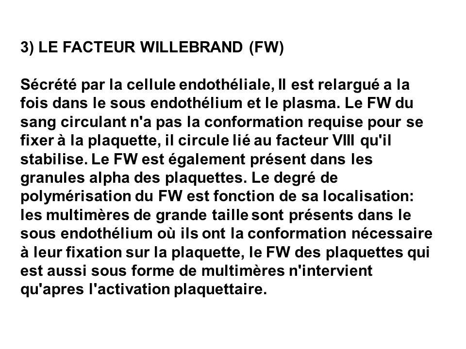 3) LE FACTEUR WILLEBRAND (FW)