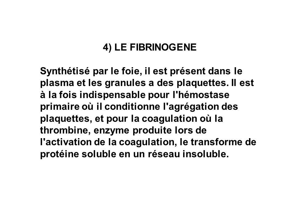 4) LE FIBRINOGENE