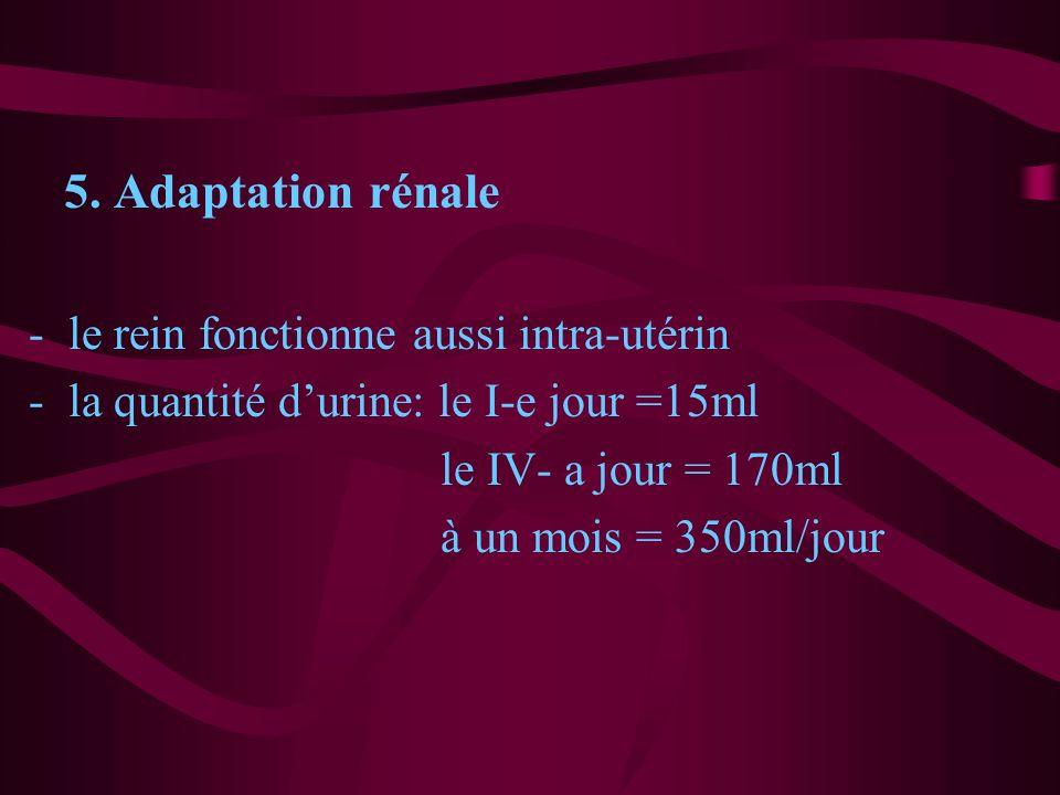5. Adaptation rénale le rein fonctionne aussi intra-utérin. la quantité d'urine: le I-e jour =15ml.