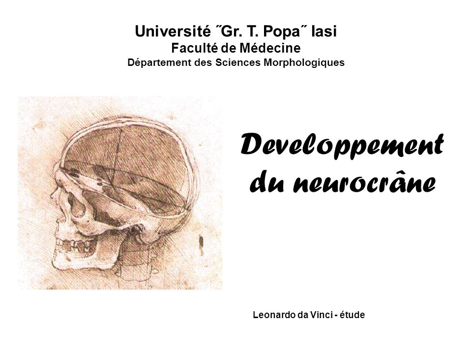 Université ˝Gr. T. Popa˝ Iasi Département des Sciences Morphologiques