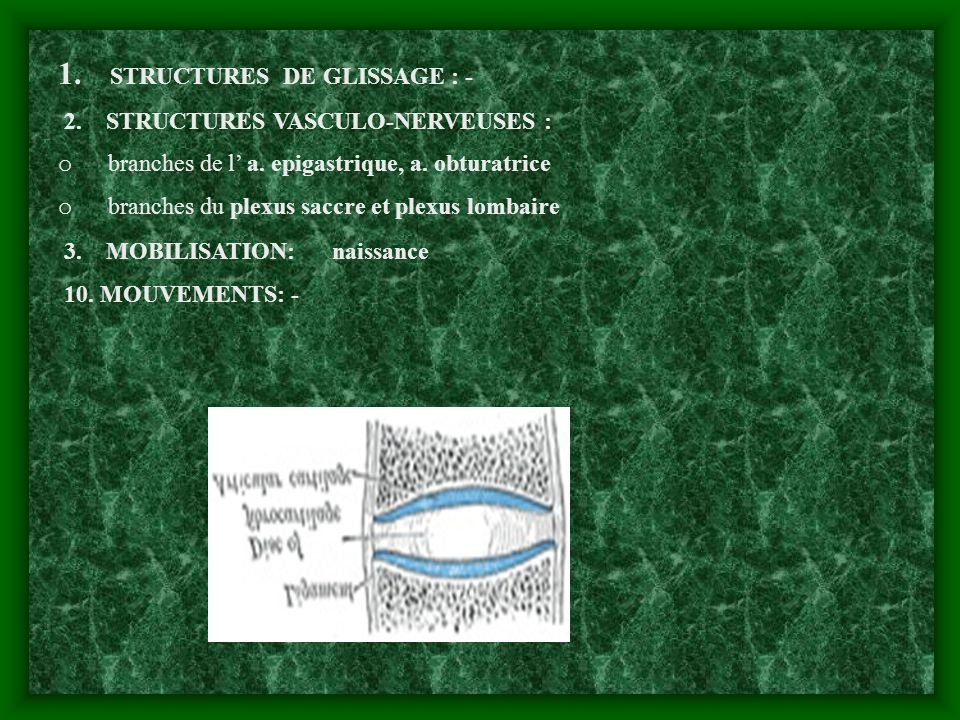 1. STRUCTURES DE GLISSAGE : -
