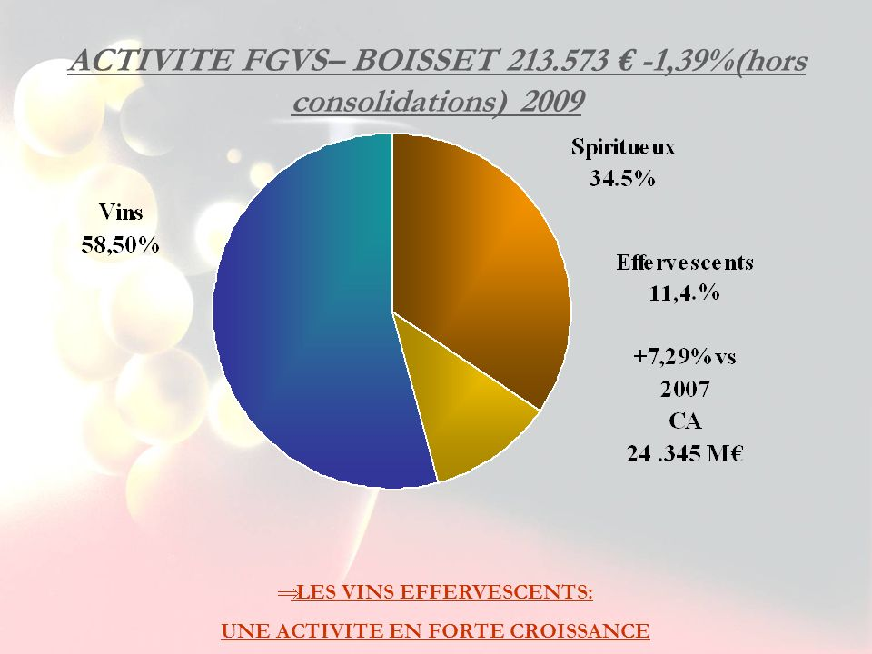ACTIVITE FGVS– BOISSET 213.573 € -1,39%(hors consolidations) 2009