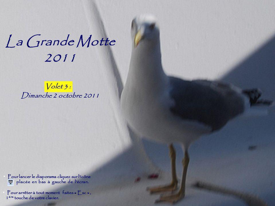 La Grande Motte 2011 Volet 2 Dimanche 2 octobre 2011 Volet 3 :