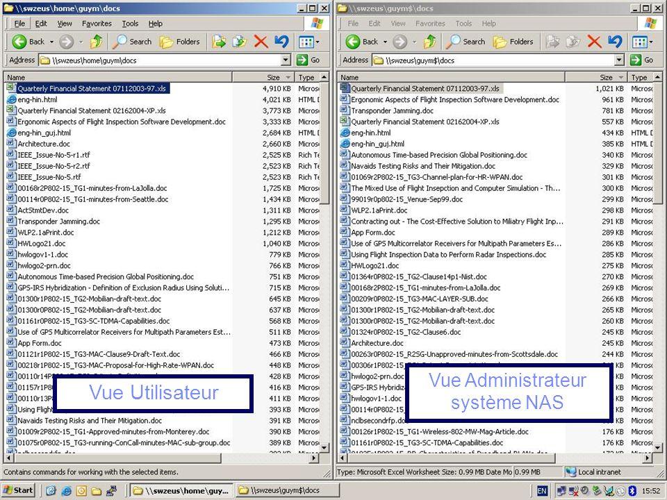 Vue Administrateur système NAS