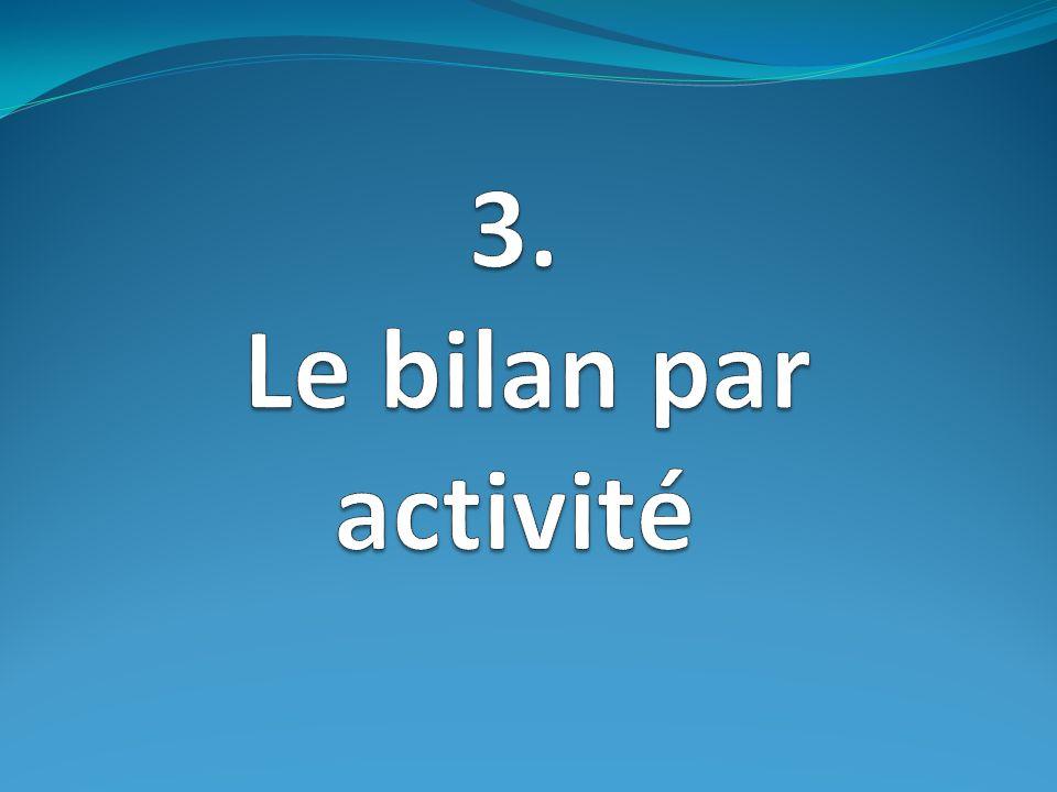 3. Le bilan par activité