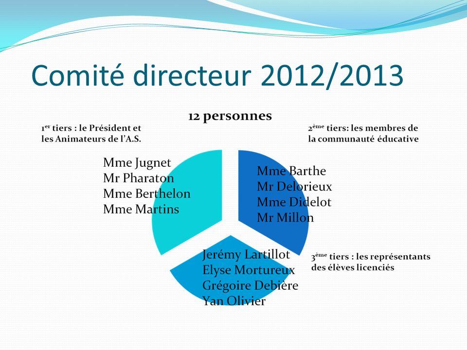 Comité directeur 2012/2013