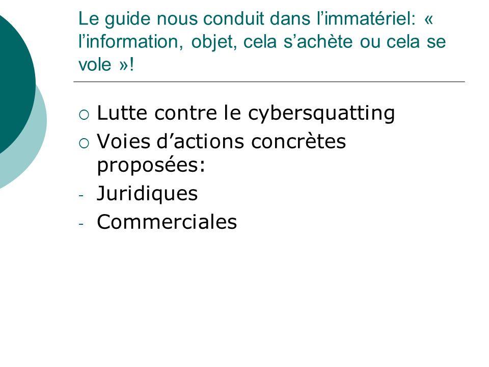 Lutte contre le cybersquatting Voies d'actions concrètes proposées: