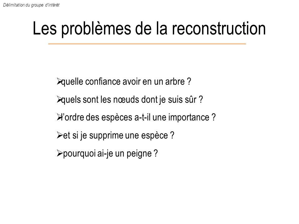 Les problèmes de la reconstruction