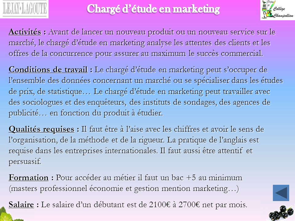 Chargé d'étude en marketing