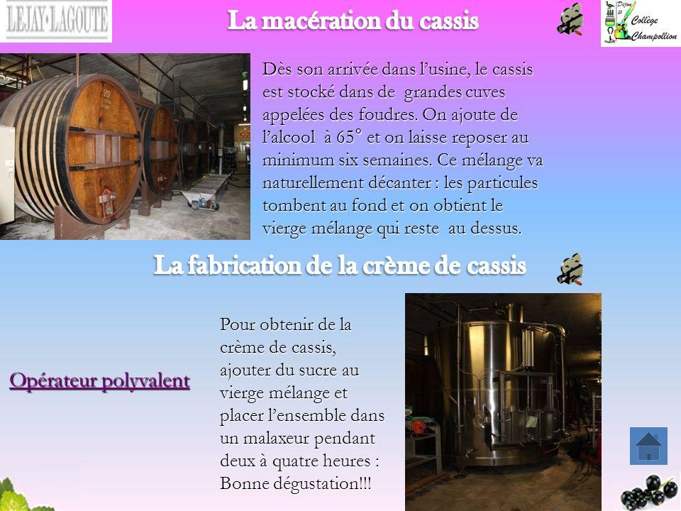 La macération du cassis La fabrication de la crème de cassis