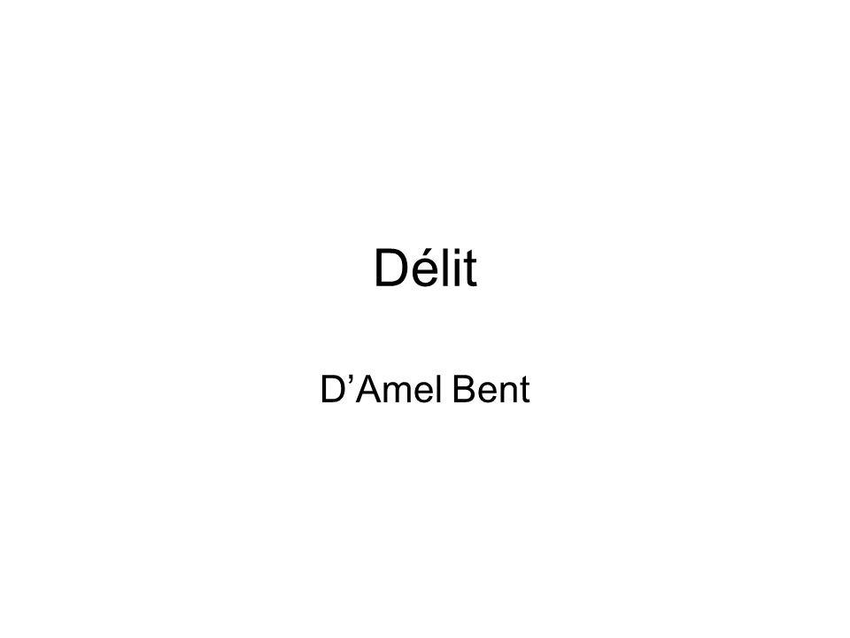 Délit D'Amel Bent