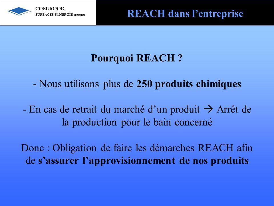 REACH dans l'entreprise