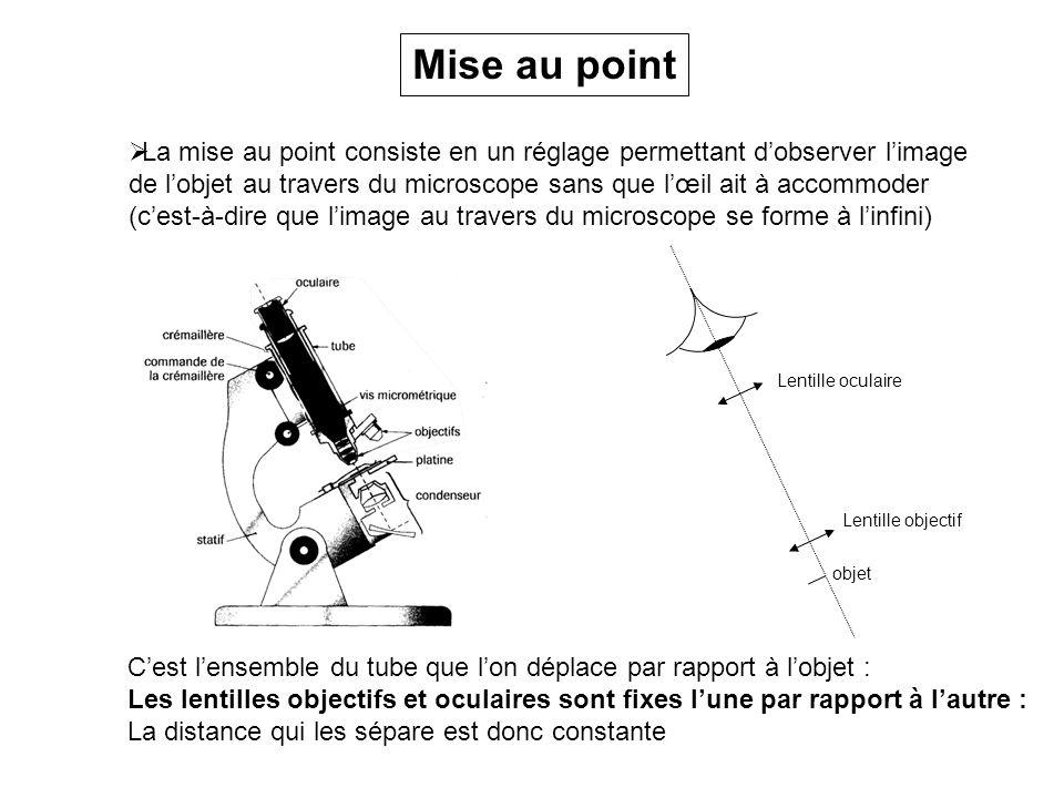 Mise au point La mise au point consiste en un réglage permettant d'observer l'image.