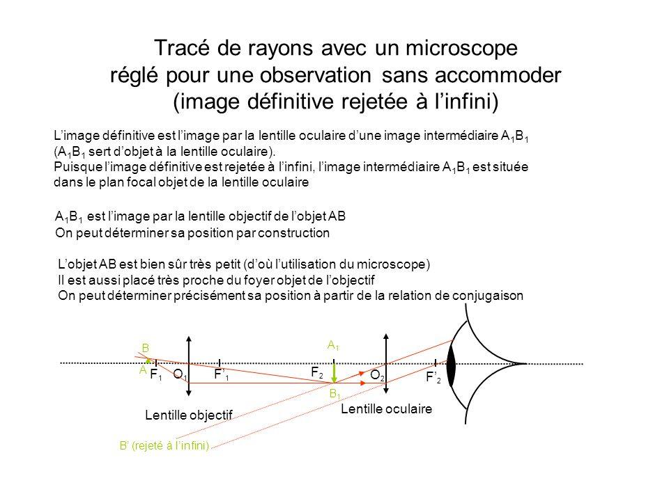 Tracé de rayons avec un microscope réglé pour une observation sans accommoder (image définitive rejetée à l'infini)