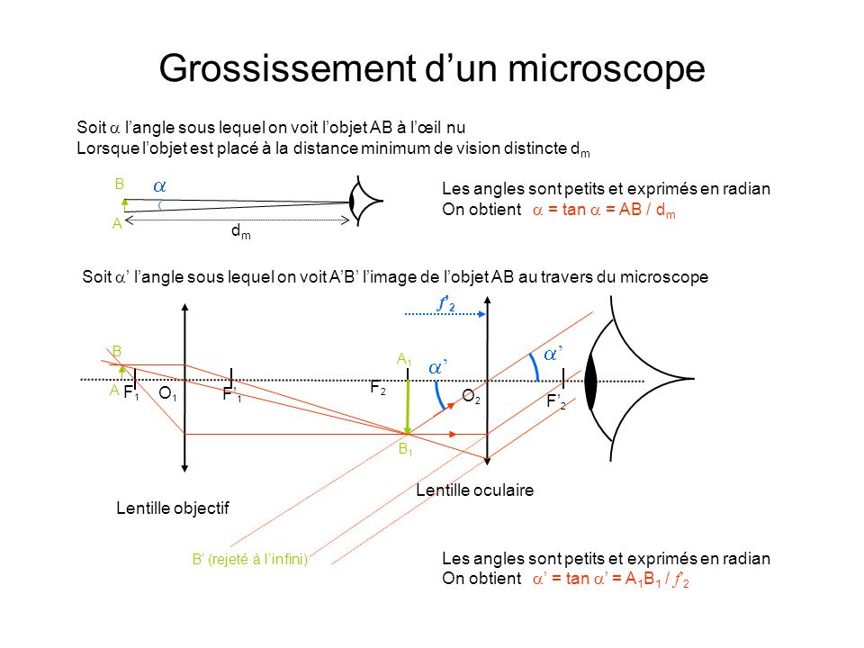 Grossissement d'un microscope