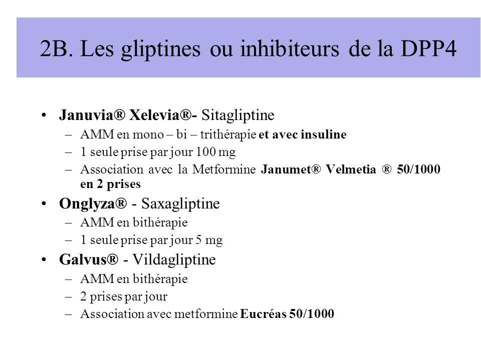 2B. Les gliptines ou inhibiteurs de la DPP4
