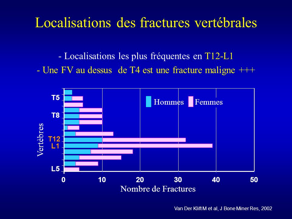 Localisations des fractures vertébrales