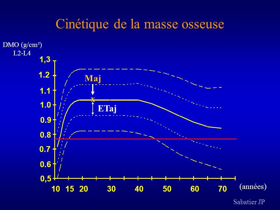 Cinétique de la masse osseuse