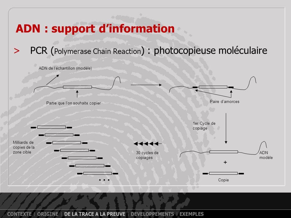 … ADN : support d'information