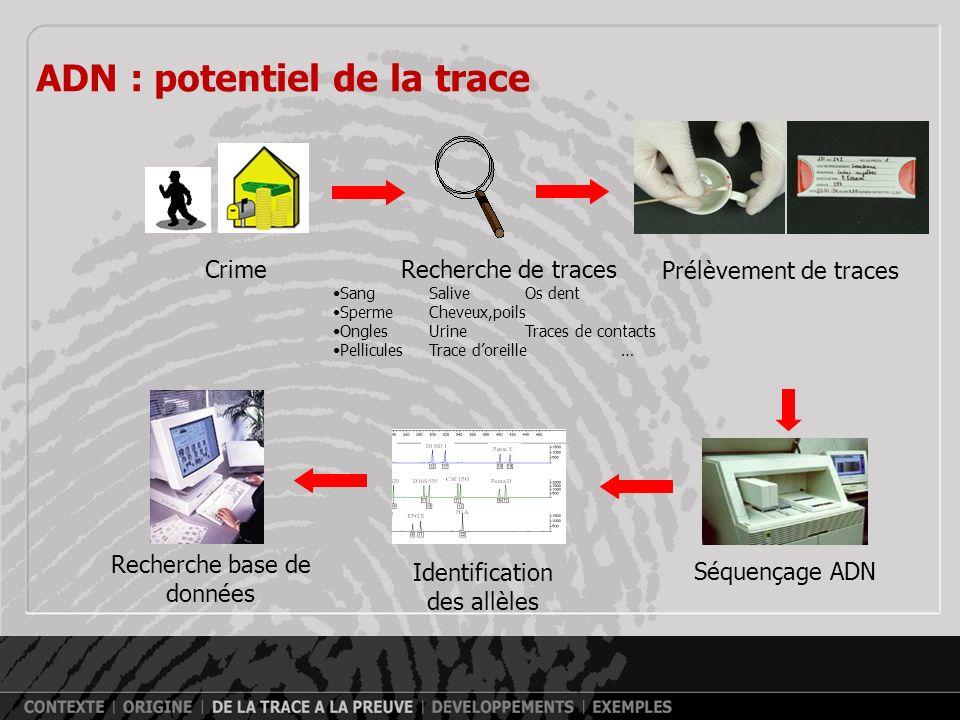 ADN : potentiel de la trace