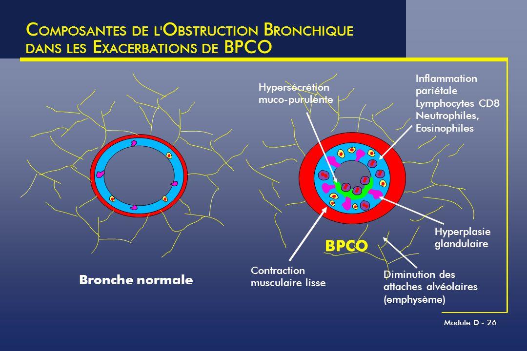 COMPOSANTES DE L OBSTRUCTION BRONCHIQUE DANS LES EXACERBATIONS DE BPCO
