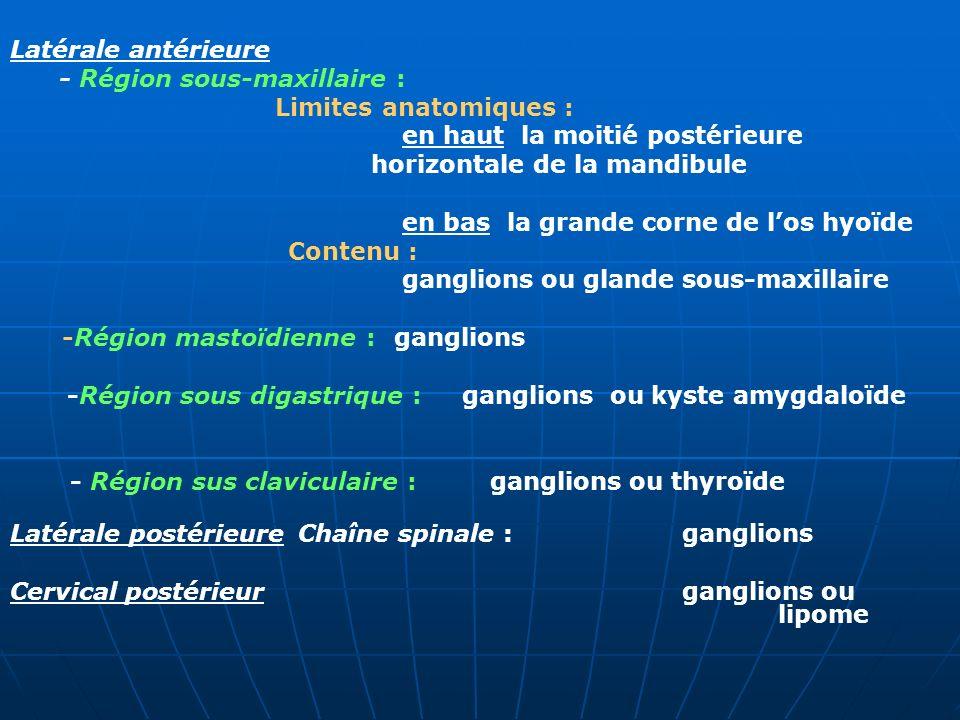 Latérale antérieure - Région sous-maxillaire : Limites anatomiques : en haut la moitié postérieure.