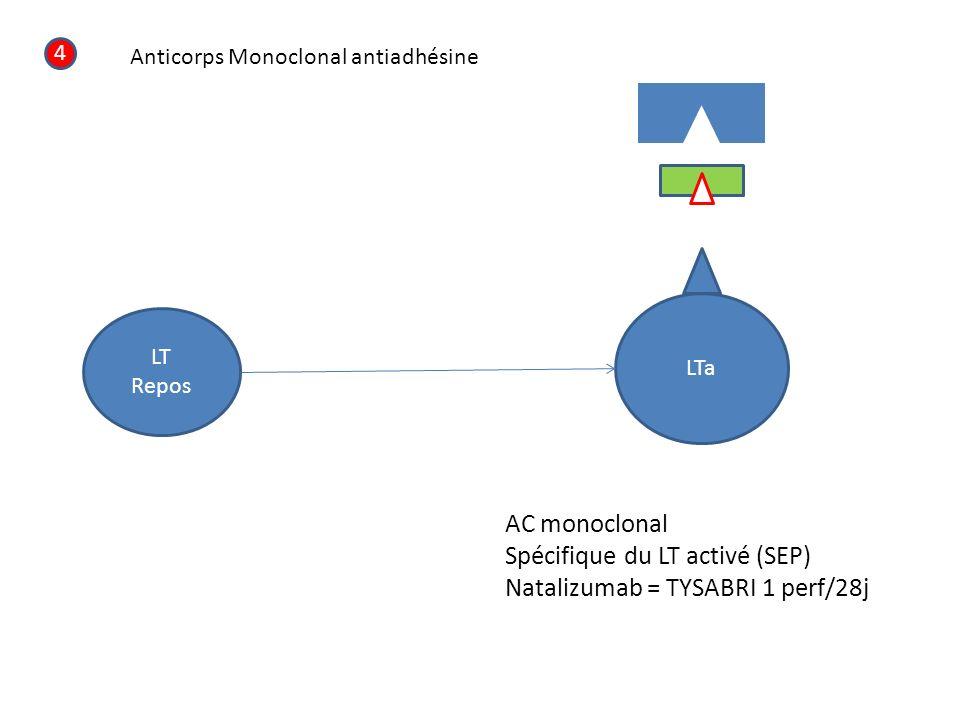 Spécifique du LT activé (SEP) Natalizumab = TYSABRI 1 perf/28j