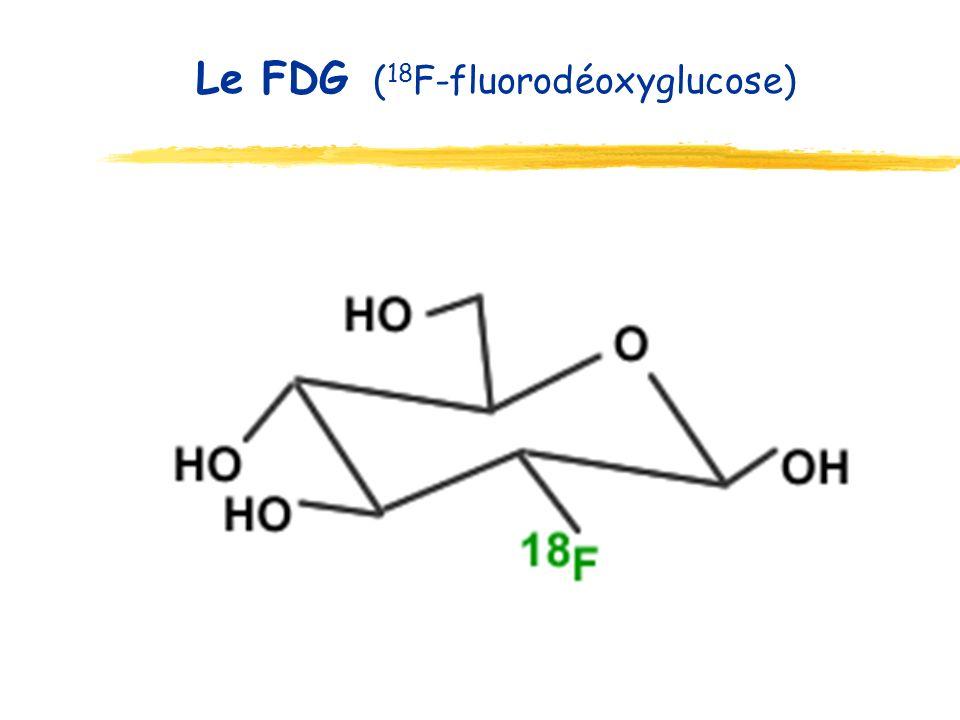 Le FDG (18F-fluorodéoxyglucose)