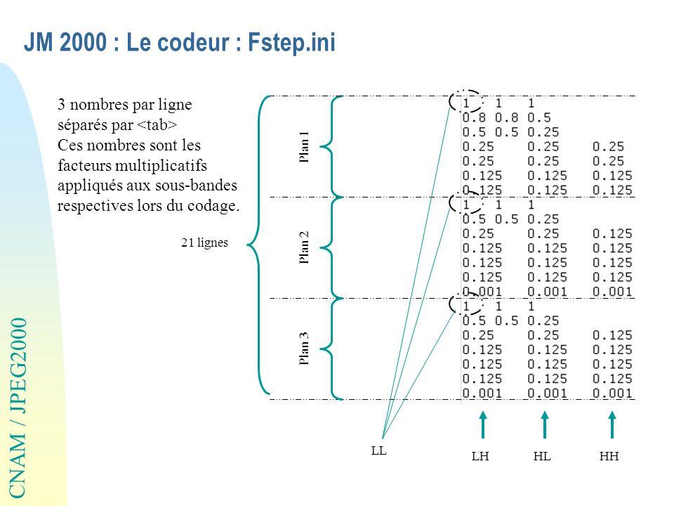 JM 2000 : Le codeur : Fstep.ini