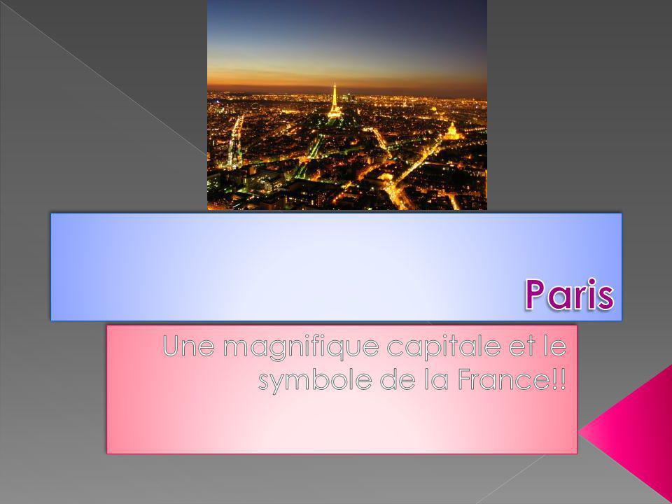 Une magnifique capitale et le symbole de la France!!