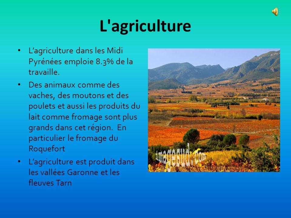 L agricultureL'agriculture dans les Midi Pyrénées emploie 8.3% de la travaille.