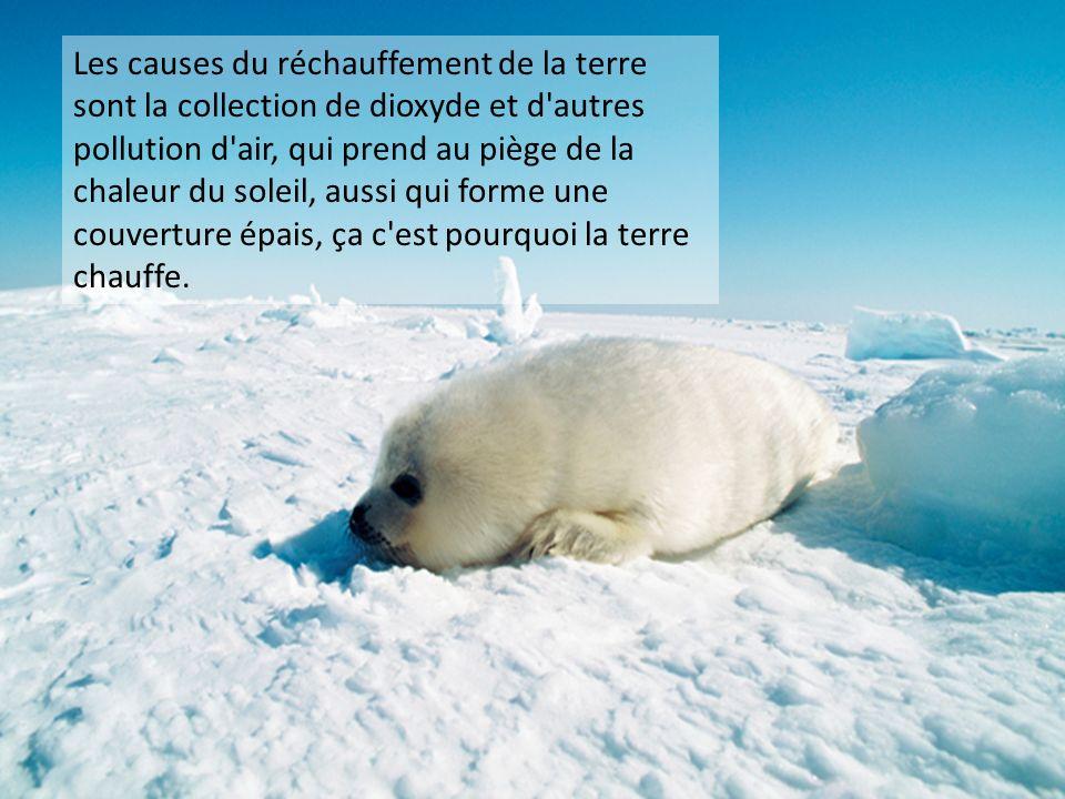 Les causes du réchauffement de la terre sont la collection de dioxyde et d autres pollution d air, qui prend au piège de la chaleur du soleil, aussi qui forme une couverture épais, ça c est pourquoi la terre chauffe.