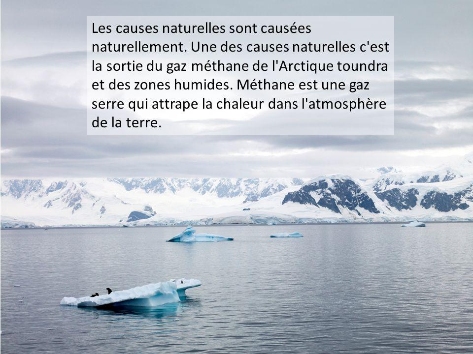 Les causes naturelles sont causées naturellement