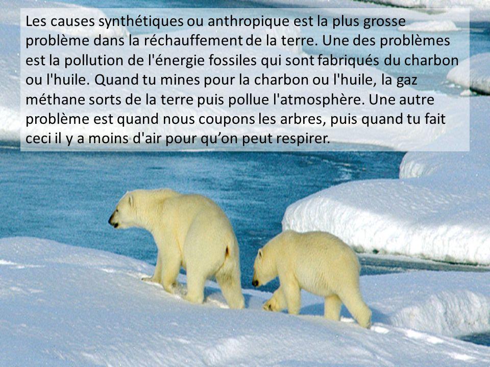 Les causes synthétiques ou anthropique est la plus grosse problème dans la réchauffement de la terre.