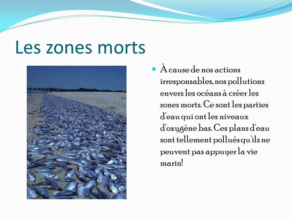 Les zones morts