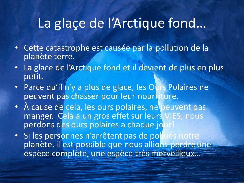 La glaçe de l'Arctique fond…