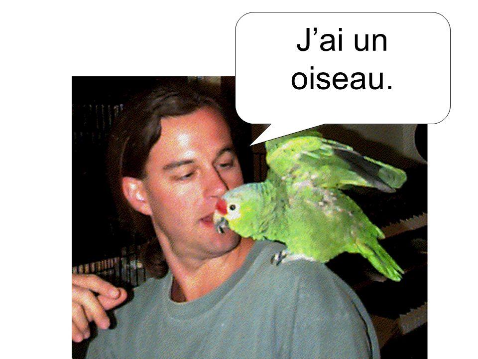 J'ai un oiseau.