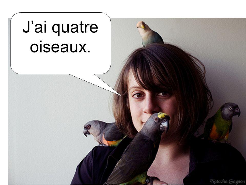 J'ai quatre oiseaux.