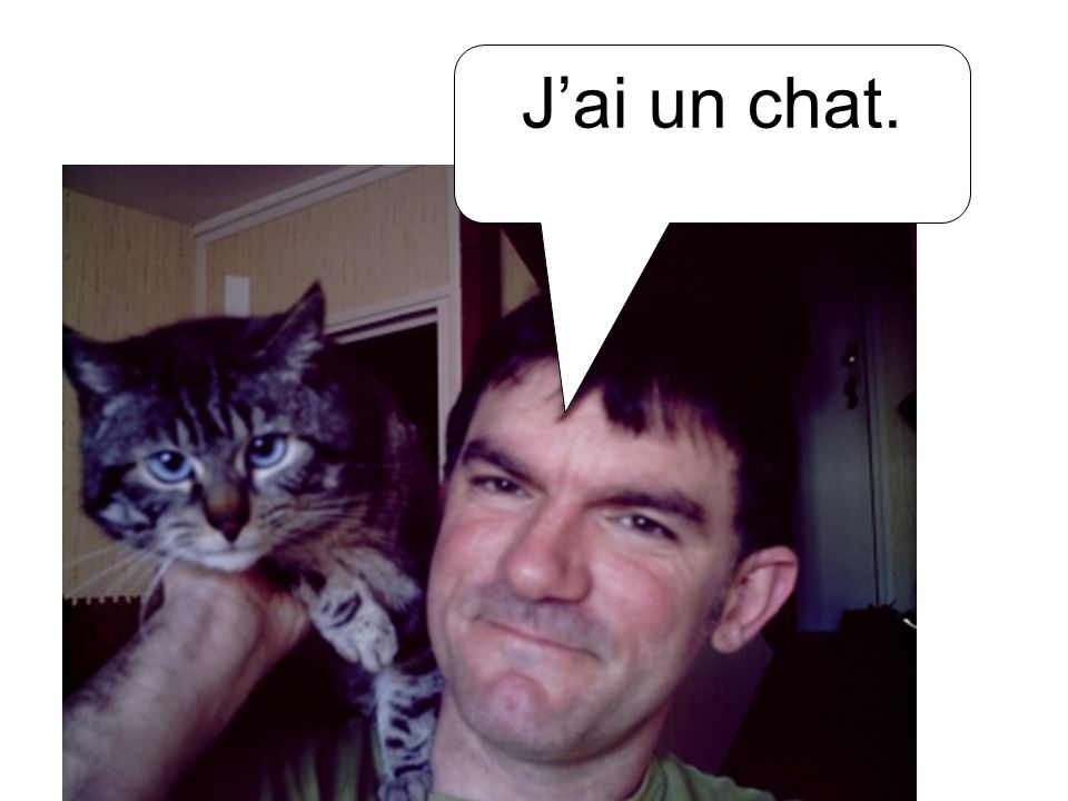 J'ai un chat.