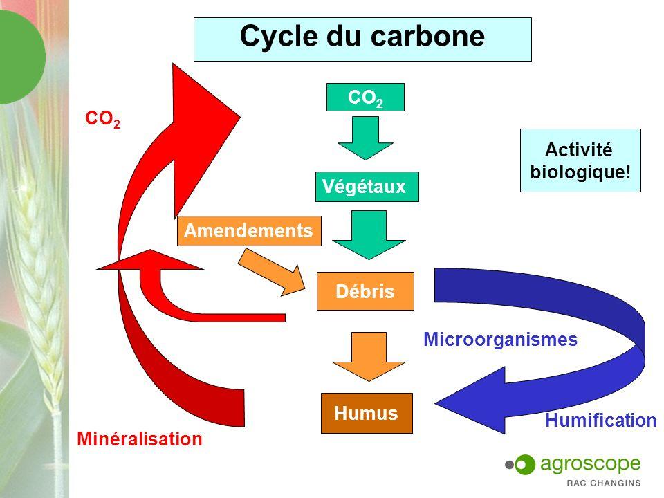 Cycle du carbone CO2 CO2 Activité biologique! Végétaux Amendements