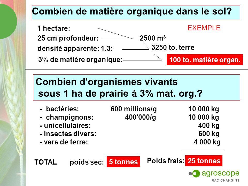 Combien de matière organique dans le sol