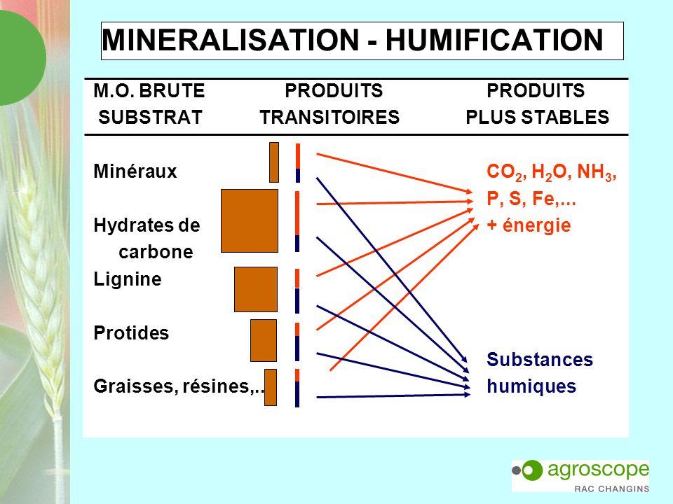 MINERALISATION - HUMIFICATION