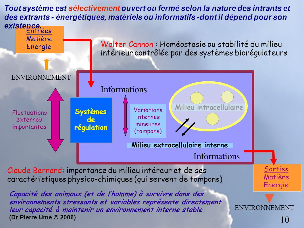 Milieu intracellulaire Milieu extracellulaire interne