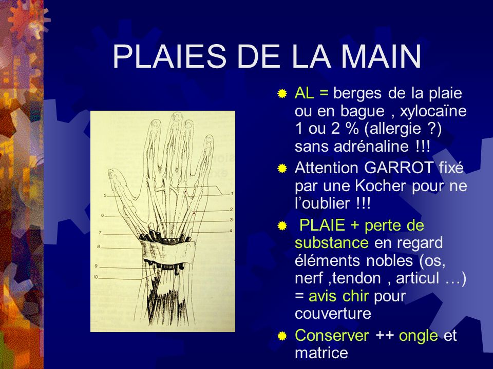 PLAIES DE LA MAIN AL = berges de la plaie ou en bague , xylocaïne 1 ou 2 % (allergie ) sans adrénaline !!!