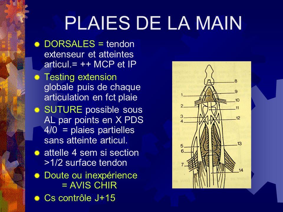 PLAIES DE LA MAIN DORSALES = tendon extenseur et atteintes articul.= ++ MCP et IP.