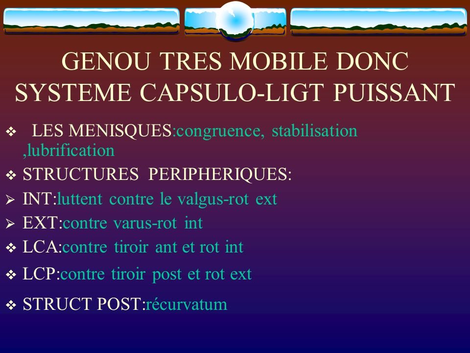 GENOU TRES MOBILE DONC SYSTEME CAPSULO-LIGT PUISSANT