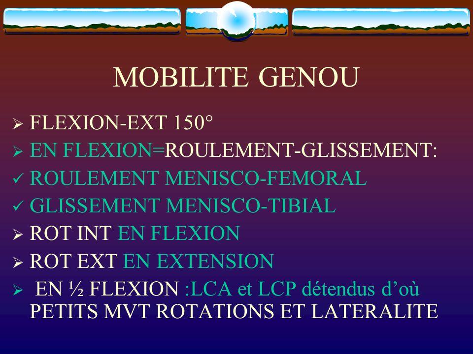 MOBILITE GENOU FLEXION-EXT 150° EN FLEXION=ROULEMENT-GLISSEMENT: