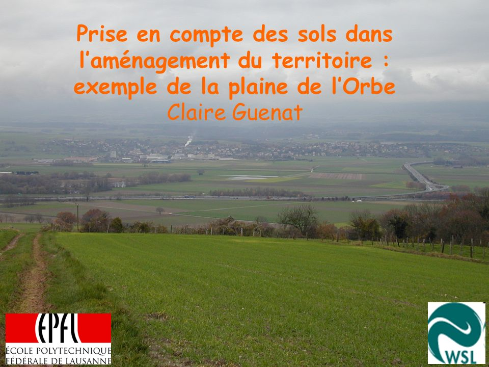 Prise en compte des sols dans l'aménagement du territoire : exemple de la plaine de l'Orbe Claire Guenat